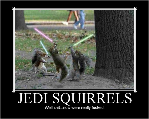 Star Wars Motivational Poster - Jedi Squirrels
